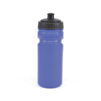 Lioness Sports Bottles