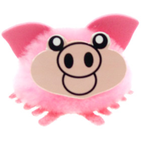 Personalised Fuzzy Pig Bug